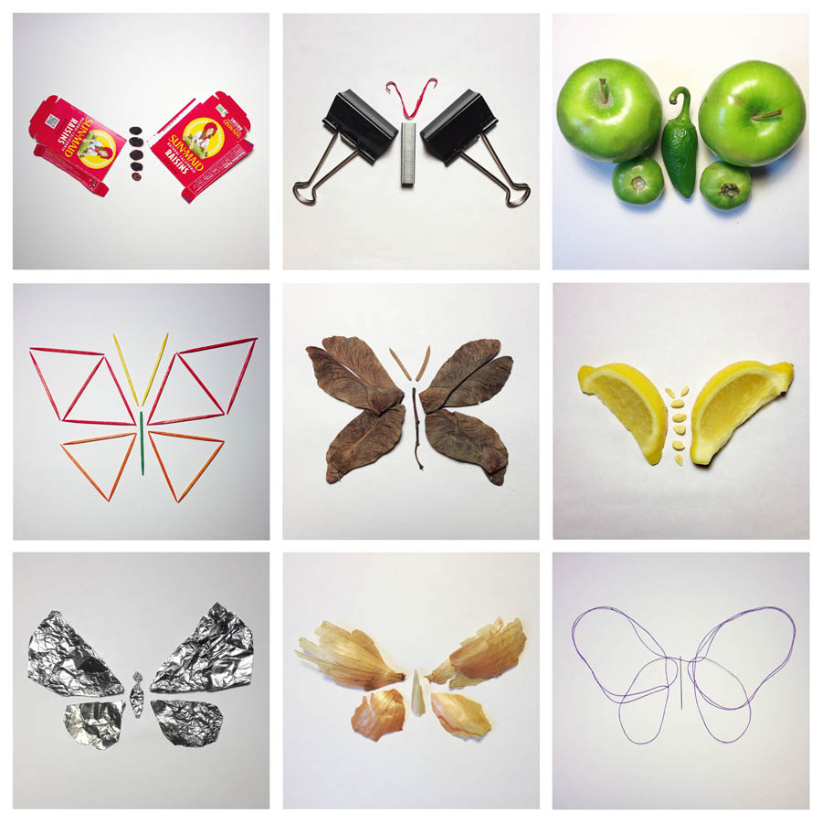 Everything Can Be a Butterfly -Group 2