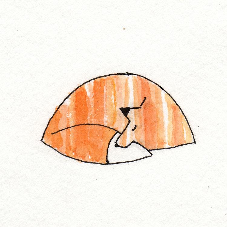 Fox Sleeping Watercolor Illustration