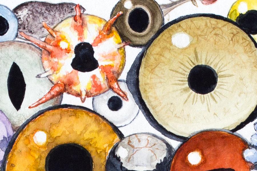 Animal eyes watercolor painting detail 1