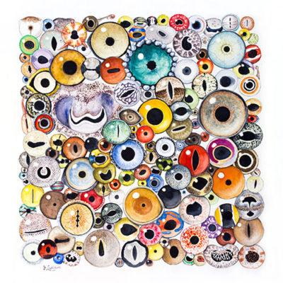 150 Animal Eyes